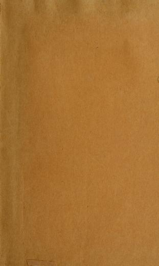 Reports of the Executive Committee, general superintendent, and treasurer of the New York Bridge Company by New York Bridge Company